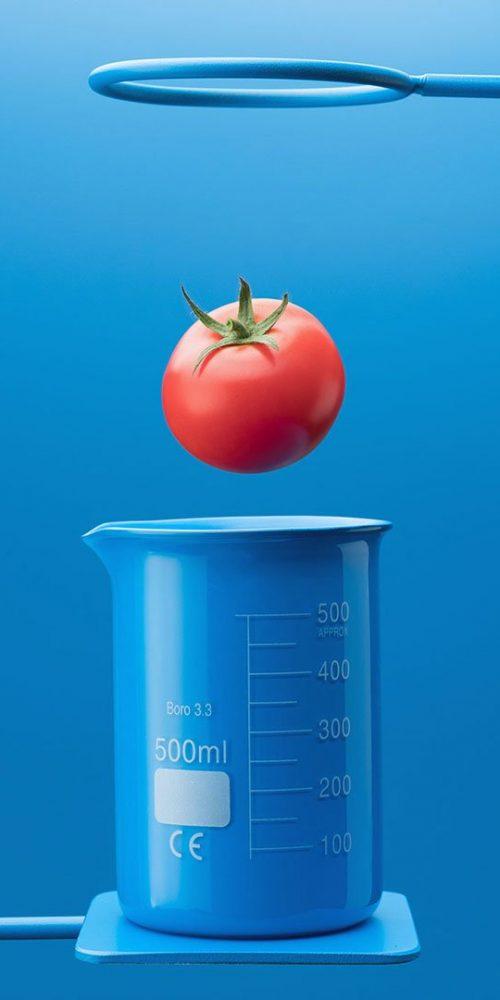 Subway tomato teleportation experiment