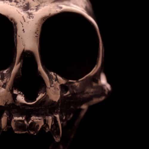Cast bronze skull